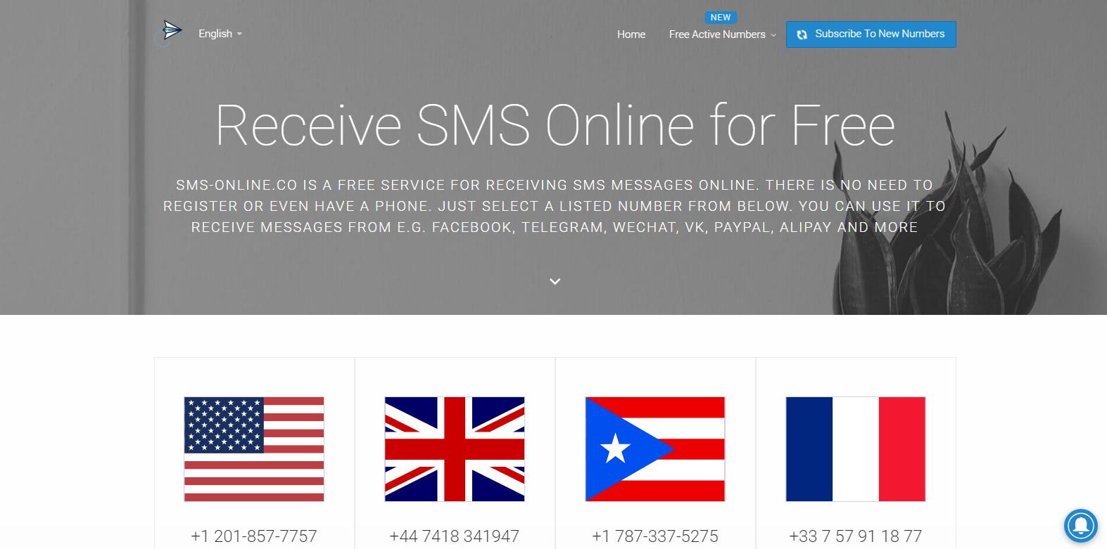 盤點15個電話SMS短信接收網站,電話號碼認證沒難度– Blowhk閒聊網